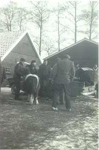 Het jonge gezin Molenkamp (1963)